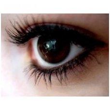 10 BLAKSTIENŲ TUŠO NAUDOJIMO TAISYKLIŲ