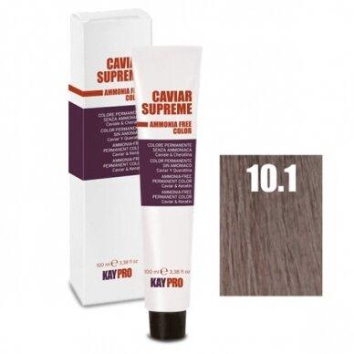 """10.1 """"KAYPRO Caviar Supreme"""" kreminiai dažai be amoniako, pelenų sp. PLATINUM BLOND sp., 100ml."""
