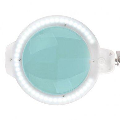 """Kosmetologinė LED lempa MOONLIGHT 8013/6"""" WHITE su stovu 5"""