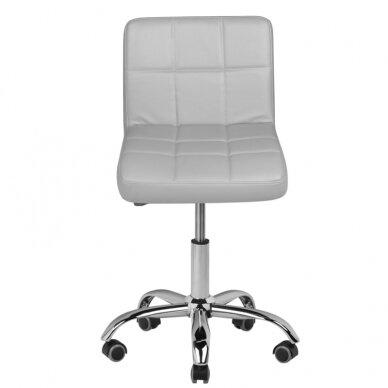 Meistro kėdė A-5299 2