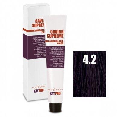 """4.2 """"KAYPRO Caviar Supreme"""" kreminiai dažai be amoniako - vidutinė ruda - violetinė sp., 100 ml."""