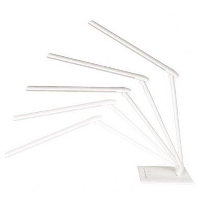 LED lempa ELEGANTE 7W, baltos sp.