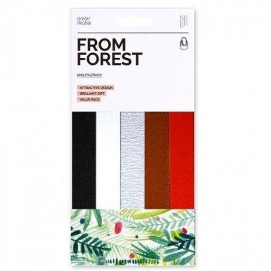 FROM FOREST nagų dildžių rinkinys 150/220, 10 vnt.
