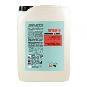 Kay Pro Vitaminico šampūnas visų tipų plaukams su VITAMINAIS, 10L
