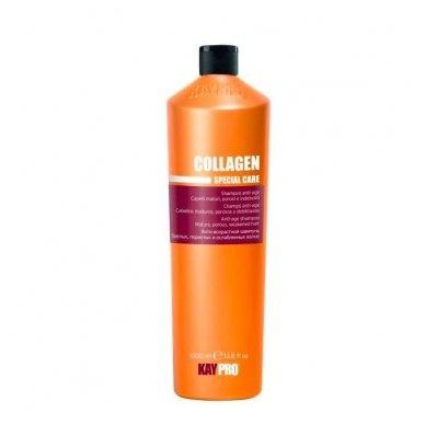KAY PRO COLLAGEN šampūnas brandiems, porėtiems, nuvargintiems plaukams, 1000 ml