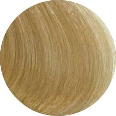 KAY PRO Natural Kay Nuance plaukų dažai 10.0 PLATINUM BLONDE, 100ml 2