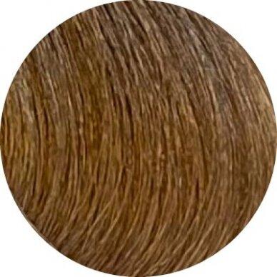 KAY PRO Natural Kay Nuance plaukų dažai 8.01 COLD LIGHT BLONDE, 100ml 2