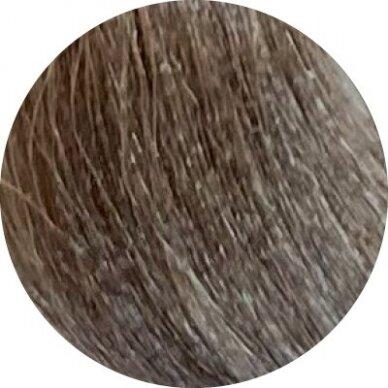 KAY PRO Natural Kay Nuance plaukų dažai 8.17 TEAK LIGHT BLONDE, 100ml  2
