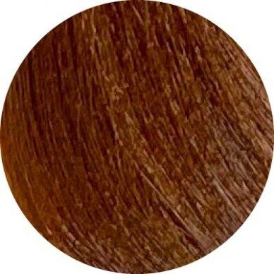 KAY PRO Natural Kay Nuance plaukų dažai 8.34 GOLDEN COPPER LIGHT BLONDE, 100ml 2