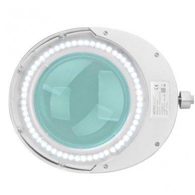Kosmetologinė lempa su lupa ELEGANTE 6025 60 LED SMD 5D su stovu, baltos sp. 2