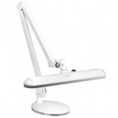 LED LAMPA ELEGANTE 801- L su šviesos intensyvumo nustatymu, pastatoma