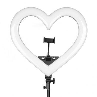 LED vizažo lempa RING HEART, 48W, SKIRTINGOS apšvietimo spalvos