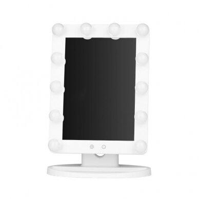 Makiažo veidrodėlis su apšvietimu MC79 3