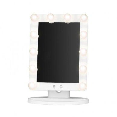 Makiažo veidrodėlis su apšvietimu MC79 4
