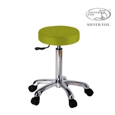 Meistro kėdutė, 1023A SILVER FOX LIME