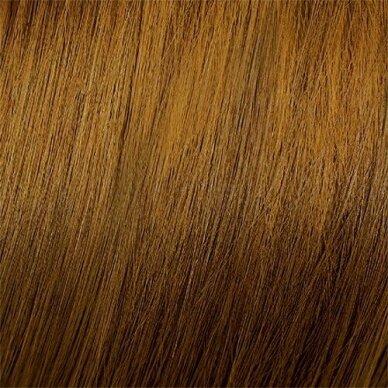 MOOD COLOR CREAM CREAM 6.3 DARK GOLDEN BLONDE plaukų dažai, 100ml