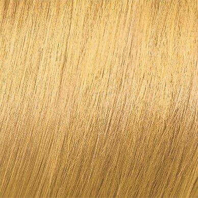 MOOD COLOR CREAM CREAM 9.3 EXTRA LIGHT GOLDEN BLONDE plaukų dažai, 100ml