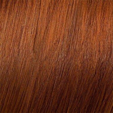 MOOD COLOR CREAM CREAM 6.4 DARK COPPER BLONDE plaukų dažai, 100ml