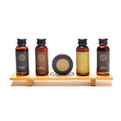 Plaukų kondicionierius-šampūnas SIGN, 30 ml 2
