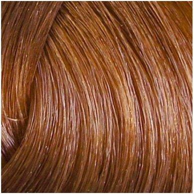 Rinkinys antakiams ir barzdai dažyti Riflexil 7/0, natūrali blond sp. 2