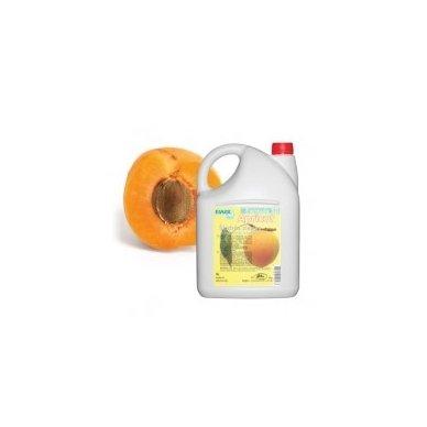 """Skystas antibakterinis muilas EWOL """"Apricot"""" 5L"""