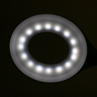 Stalinė lempa LED RING SNAKE, baltos sp. 4