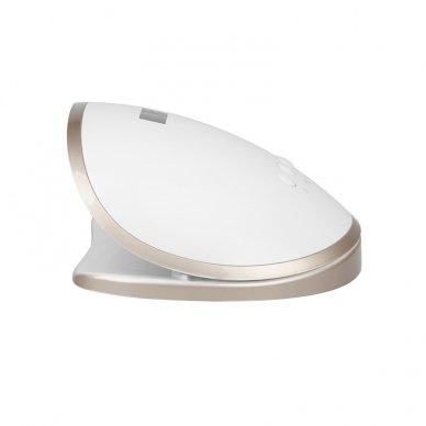 UV/LED lempa nagams DUAL S8 68W WHITE 3